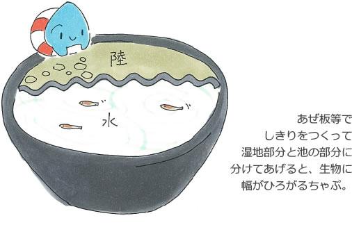 ビオトープ